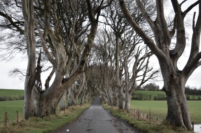 Taking a Game Of Thrones Tour in Northern Ireland