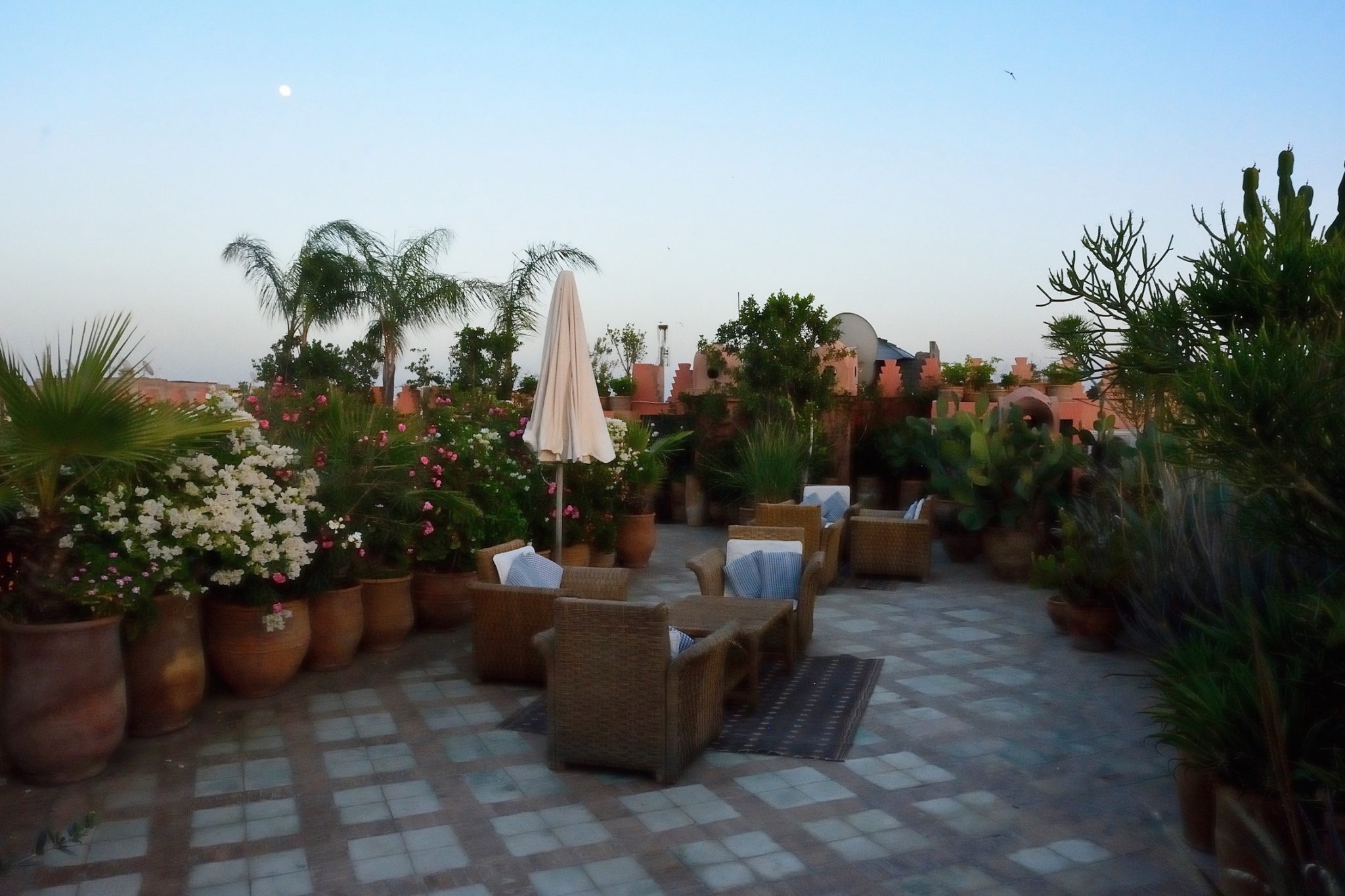 Review: Salt at Dar Les Cigognes, The Sanssouci Collection, Marrakech