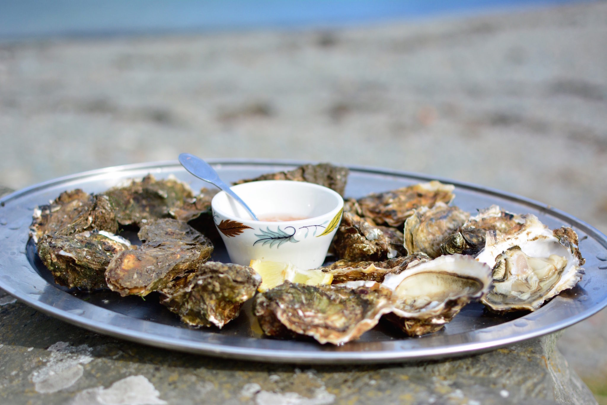 a-lovely-planet-oysters