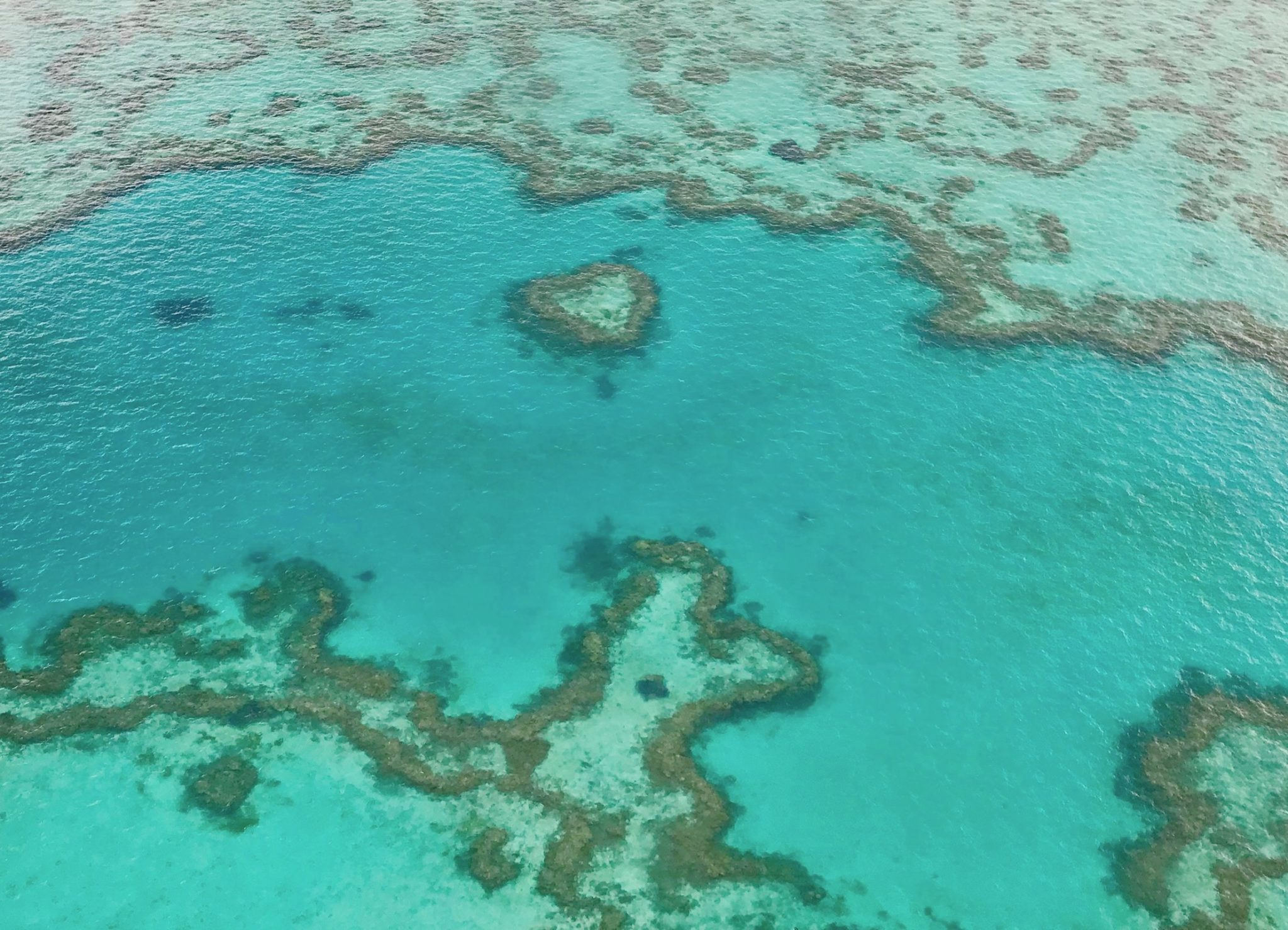 The Whitsundays: How To Experience The Best Of The Whitsunday Islands