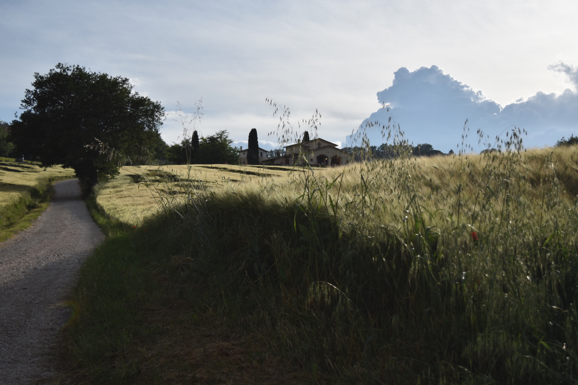 3 Days In Umbria, Italy - A Lovely Planet